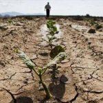 LO STUDIO. Mutamenti climatici: nel periodo 2015-2017 accelerano l'aumento delle temperature e la riduzione delle piogge