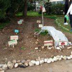 Ecco l'orto-didattico della scuola Lombardi realizzato con la collaborazione di Confagricoltura Bari-Bat – FOTO