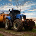Sostegno agli investimenti delle imprese agricole, pubblicata la graduatoria di Ismea